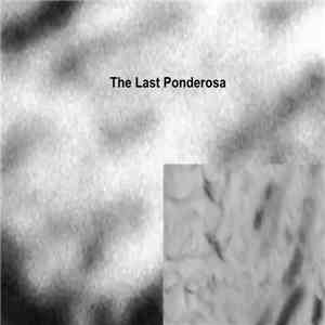 Ilir Lluka - The Last Ponderosa download mp3