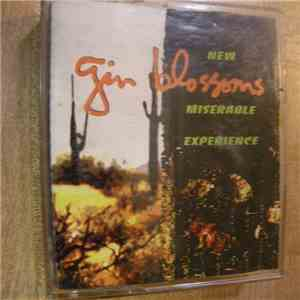 Gin Blossoms - New Miserable Experience mp3 download